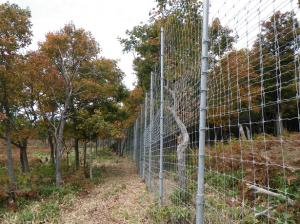 平成24年度知床生態系維持回復事業岩尾別地区仕切柵等整備工事